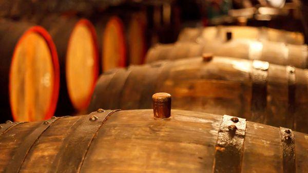 Vòng đời của sản phẩm rượu vang